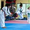 Calgary Taekwondo Academy company