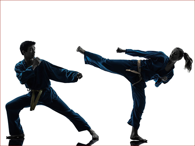 Adult Martial Arts Calgary Taekwondo Academy