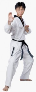 Adult Advanced Taekwondo classes
